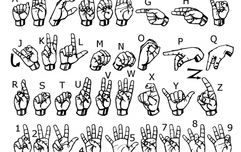 Learn a language and make new friends in sign language club